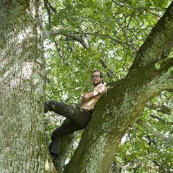 Baumpflege  Barmet Baumpflege - 10 Photos - Tree Services - Oberschwelli ...
