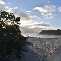 Photo Of Del Mar Dog Beach Ca United States