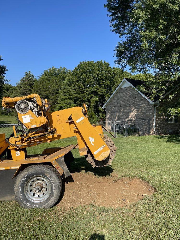Austin Stump Removal: Bethpage, TN