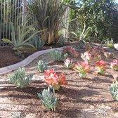Wonderful Photo Of Xeristyle Exterior Design   Fullerton, CA, United States