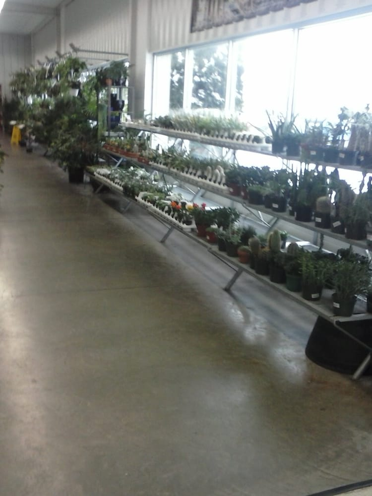 Stein S Garden Home 14 Foto Vivai E Giardinaggio 6300 Green Bay Rd Kenosha Wi Stati