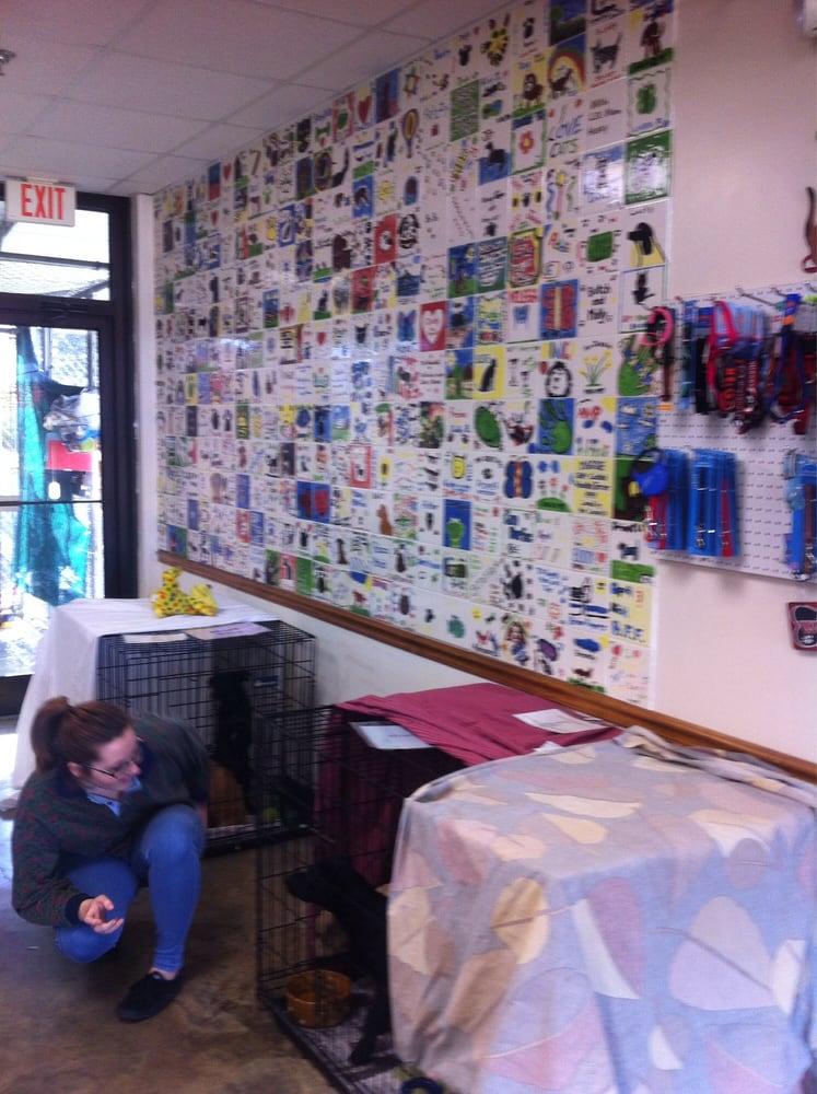 Collierville Animal Shelter: 603 E S St, Collierville, TN