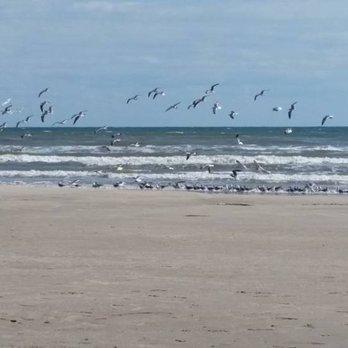 Photo Of Malaquite Beach Visitor Center Corpus Christi Tx United States