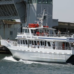 Miss belmar princess 36 reviews boat charters 905 for Belmar fishing charters