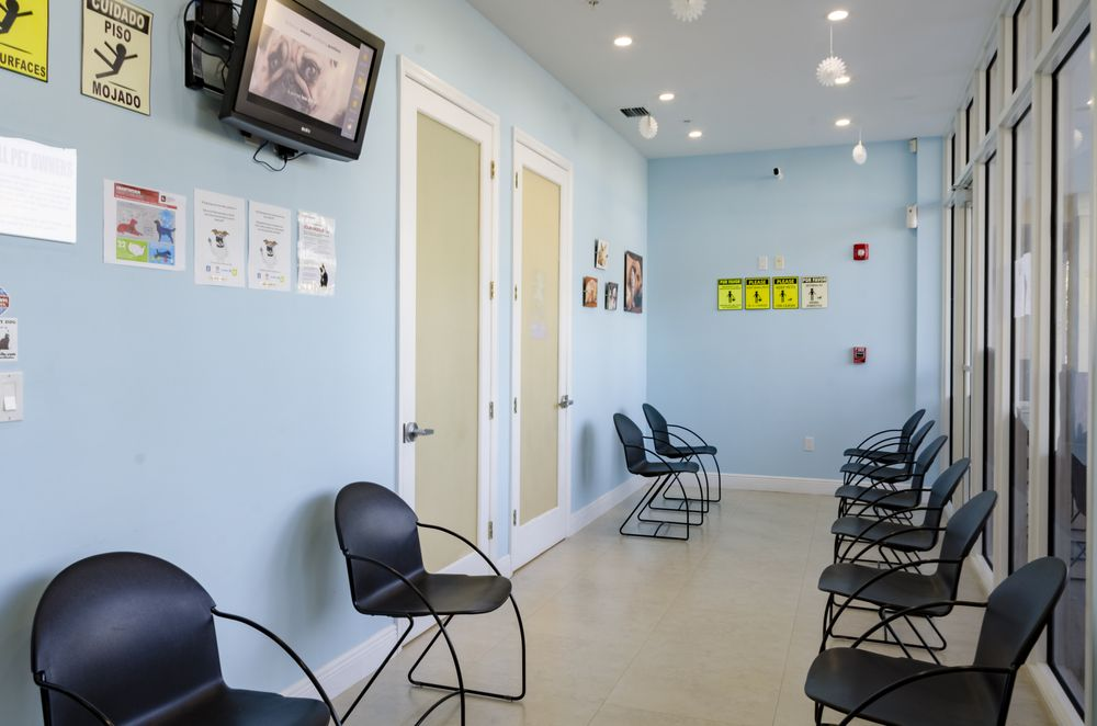 Paws and Claws Medical Center