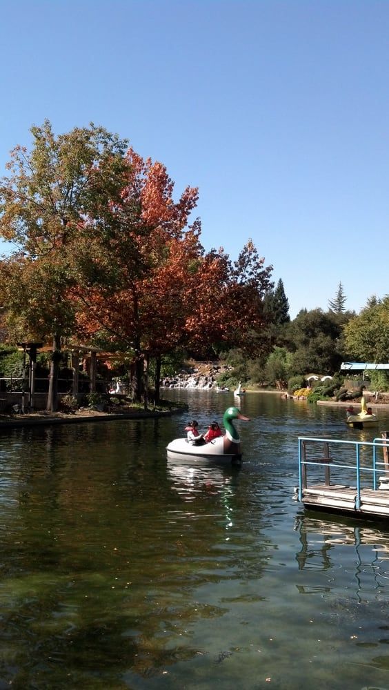 Duck Paddle Boats Excellent Way To Burn Off All That Junk Food Yelp