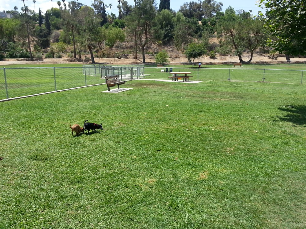 Redlands Dog Park Address