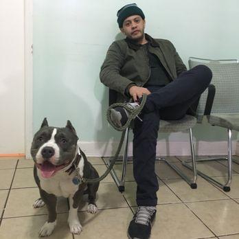 Animal Clinic Summit Ave Union City Nj