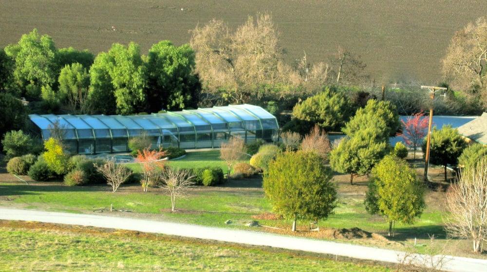 Windbreak via berm and low maintenance landscape pool for Low maintenance pool landscaping