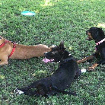 Redhawk Temecula Dog Park