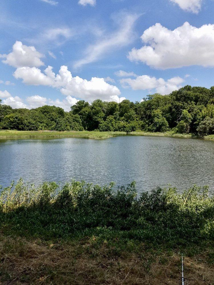 Lester Lorch Park