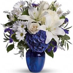 Flower Tucci Creampie