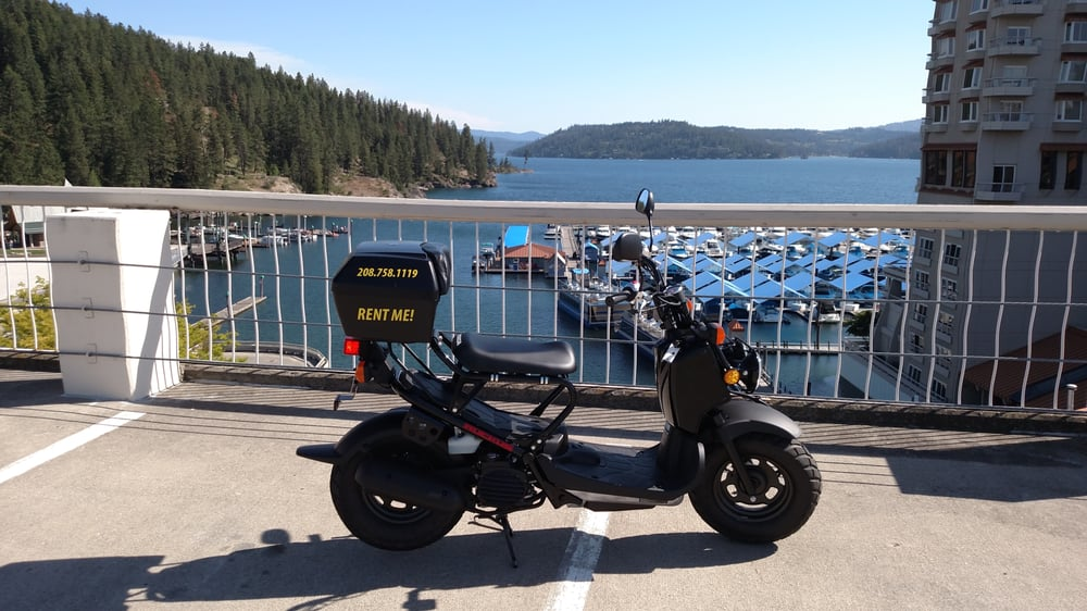 free motorcycle d  Honda Ruckus! No motorcycle endorsement required! No experience ...