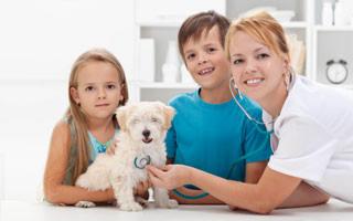 Ogemaw Veterinary Clinic: 1866 N M 33, Rose City, MI