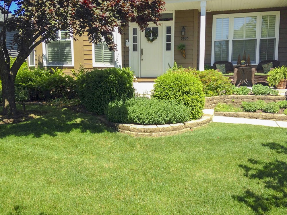 Revive Your Lawn 17 Photos 13 Reviews Landscaping 4828