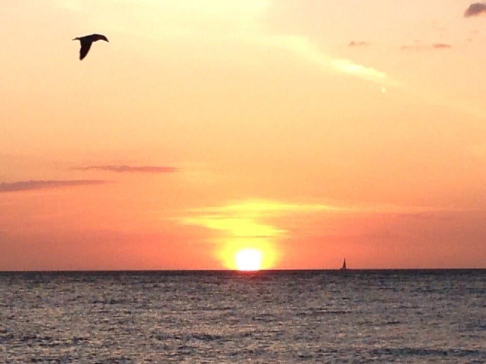 Sunrise Garden Resort: 512 Spring Ave, Anna Maria, FL