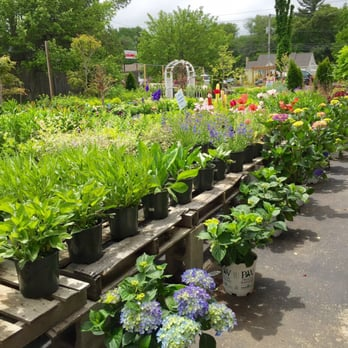 Hanover Landscape And Garden Center Landscaping 795 Washington