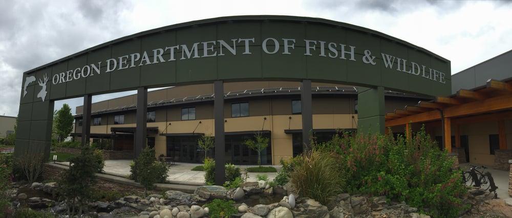 Oregon department of fish wildlife allm nna for Oregon department of fish and wildlife
