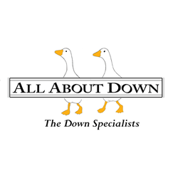 Photo of All About Down - Seattle, WA, United States