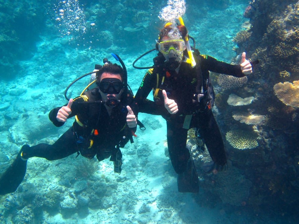Guys we met from sydney couple of hams yelp - Pro dive cairns ...