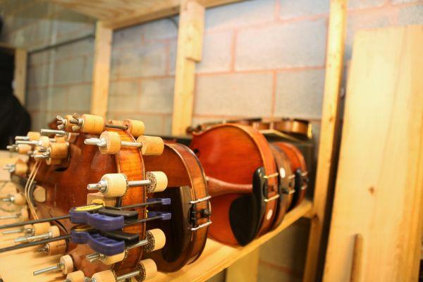 Musical instruments, in Gainesville, VA - Gainesville, VA Musical