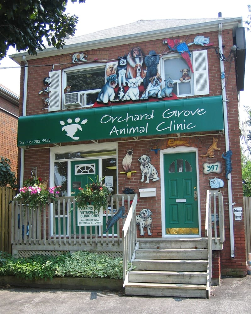 Orchard Grove Animal Clinic - Veterinarians - 397 Old Orchard Grove ...