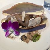 Xochi 895 photos 325 reviews mexican 1777 walker for Elite food bar 325 east 48th street