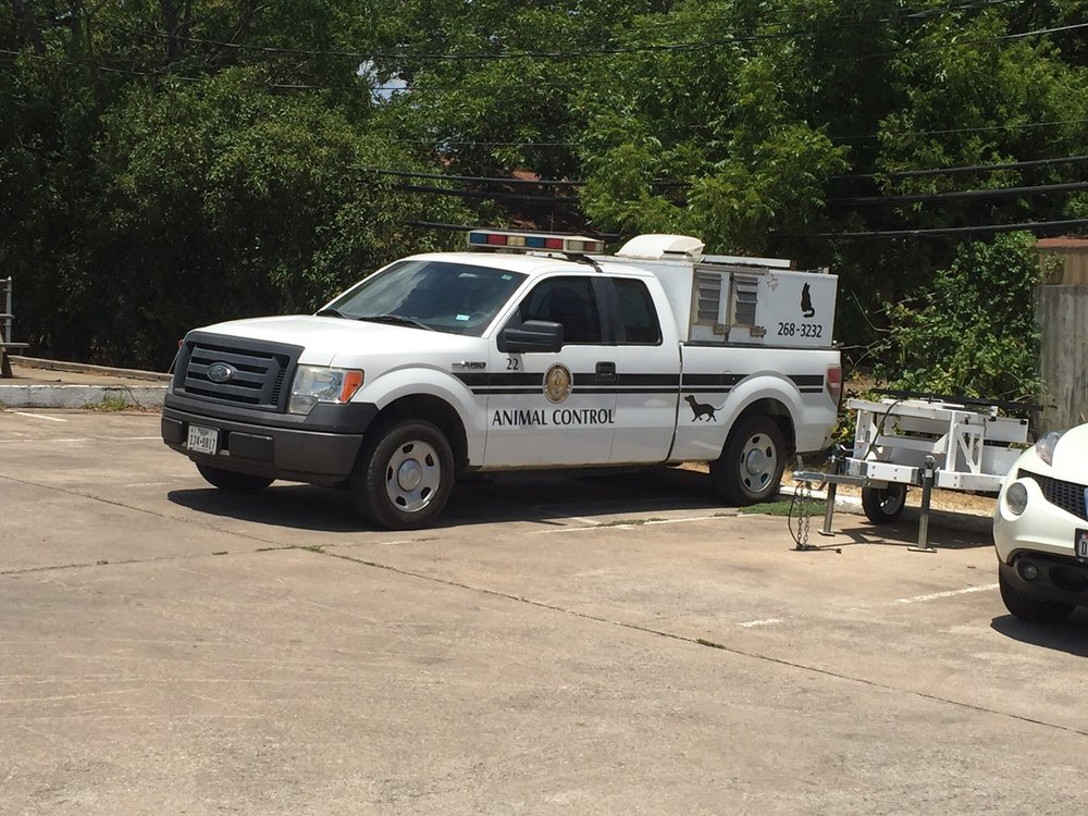 kyle animal control public services government 111 n front st kyle tx phone number yelp. Black Bedroom Furniture Sets. Home Design Ideas