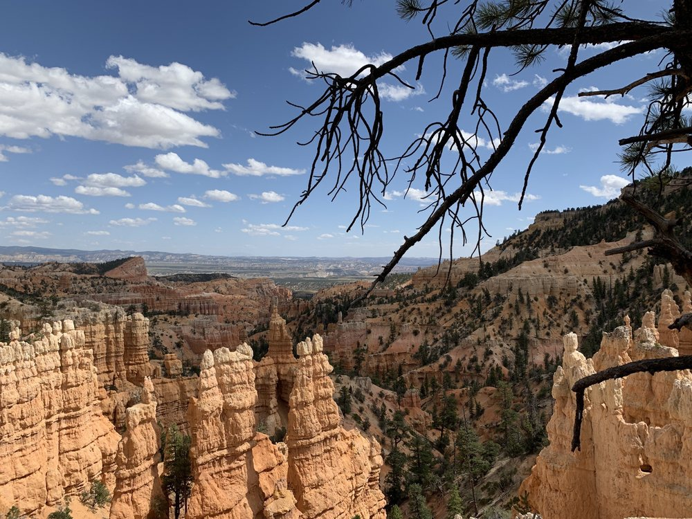 Fairyland Loop Trail: Highway 63/1 Park Rd, Bryce Canyon, UT