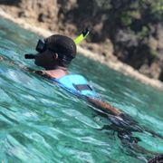 East Island Excursions 302 Photos 256 Reviews Tours Puerto