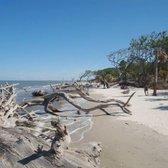 Photo Of Driftwood Beach Jekyll Island Ga United States Bring Camera