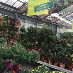 Dehner casa y jard n hirschstettner str 62 for Telefono casa jardin