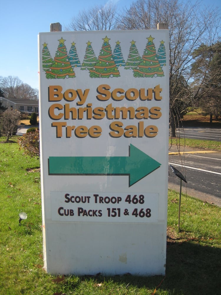 Broomall Scout Trees: 220 Lawrence Rd, Broomall, PA