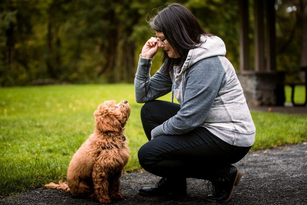 Happy Dogz Dog Training: 4804 NW Bethany Blvd, Portland, OR
