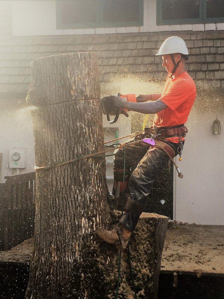 Cutting Edge Tree Service: Saint Helens, OR