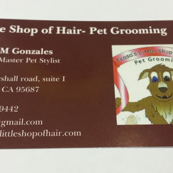Teasas little shop of hair pet grooming 71 photos 23 reviews photo of teasas little shop of hair pet grooming vacaville ca united states solutioingenieria Gallery