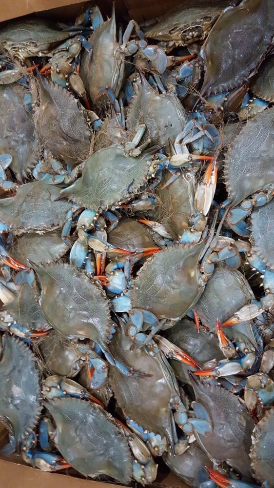 Happy snapper seafood market 197 photos 40 reviews for Fish market orlando