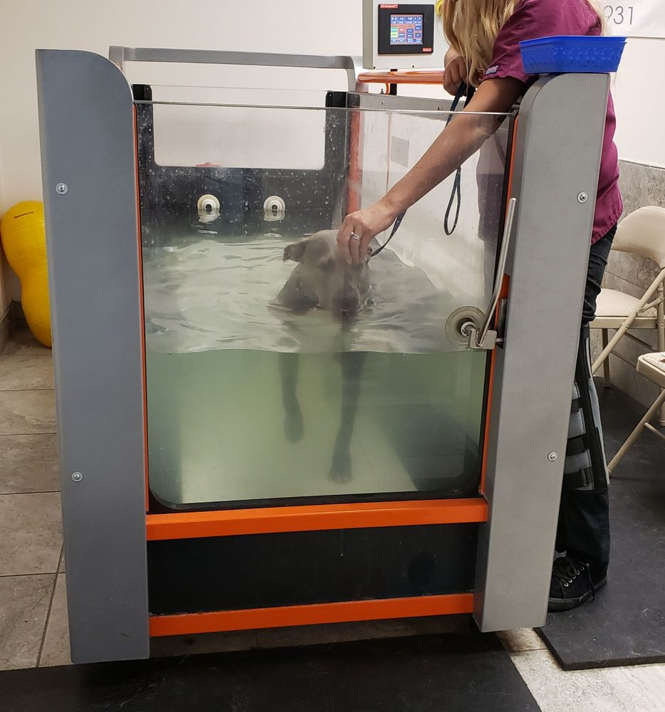 Zen Den Animal Wellness and Rehabilitation: 1055 W Columbia Way, Lancaster, CA