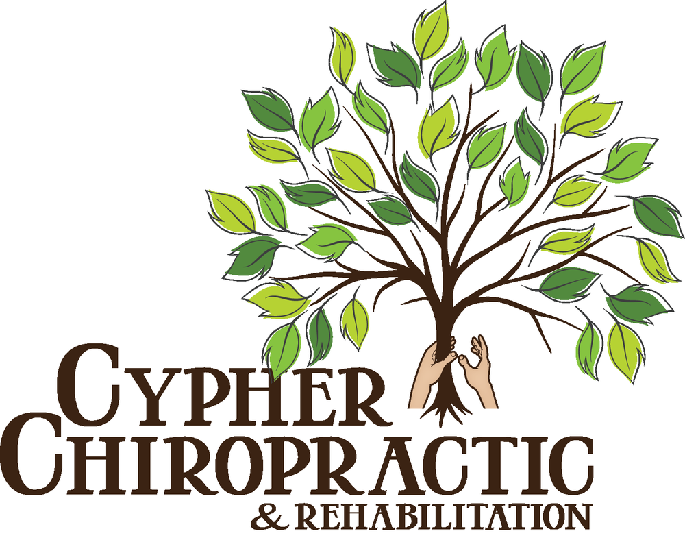 Cypher Chiropractic Center: 22636 Glenn Dr, Sterling, VA