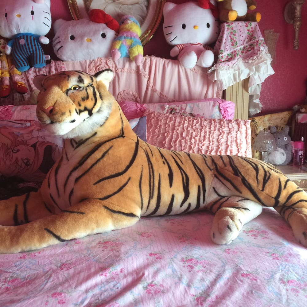 My Tiger in my bed that we got from American Furniture Warehouse - Yelp