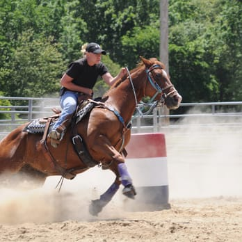 Tri Cities Horse Trainer - 11 Photos - Horseback Riding