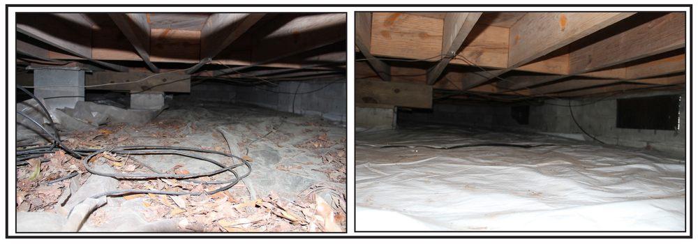 Bugno Pest Control: 7325 Haven Way, Wilmington, NC