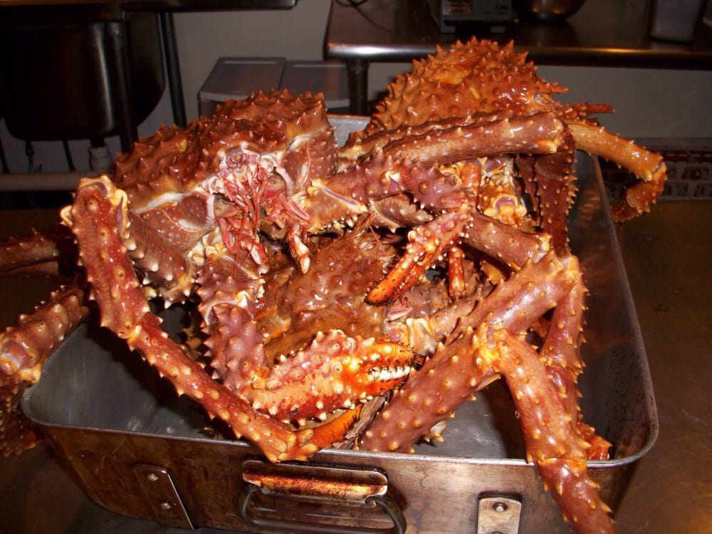Live alaskan King crab imported directly from the boat