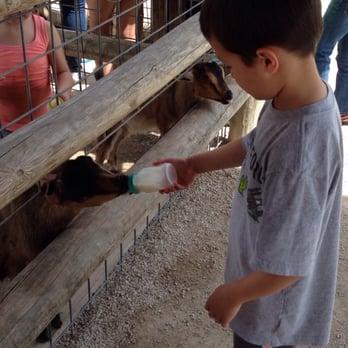 Photo Of Deanna Rose Childrenu0027s Farmstead   Overland Park, KS, United  States. Feed