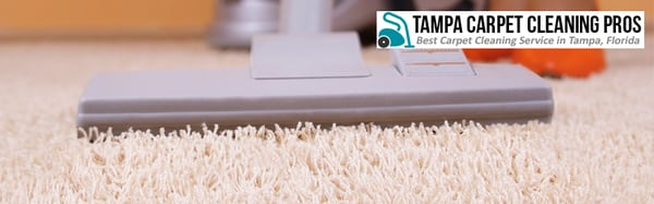 Photo of Tampa Carpet Cleaning Pros - Tampa, FL, United States