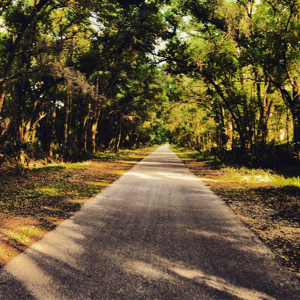 Withlacoochee State Trail: 3100 S Old Floral CIty Rd, Inverness, FL