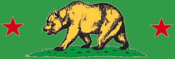 Cal Bear Painting: 551 Trout Gulch Rd, Aptos, CA