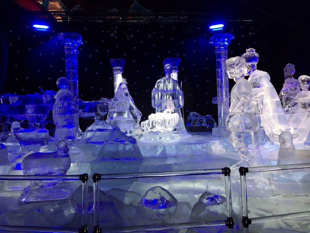e0dfea87 ICE! - 392 Photos & 279 Reviews - Active Life - 1501 Gaylord Trl ...