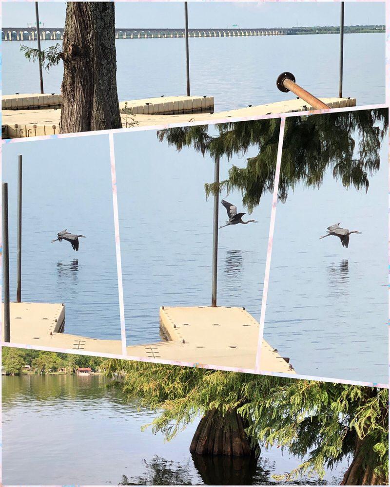 Cross Lake Bridge: Cross Lake, Shreveport, LA
