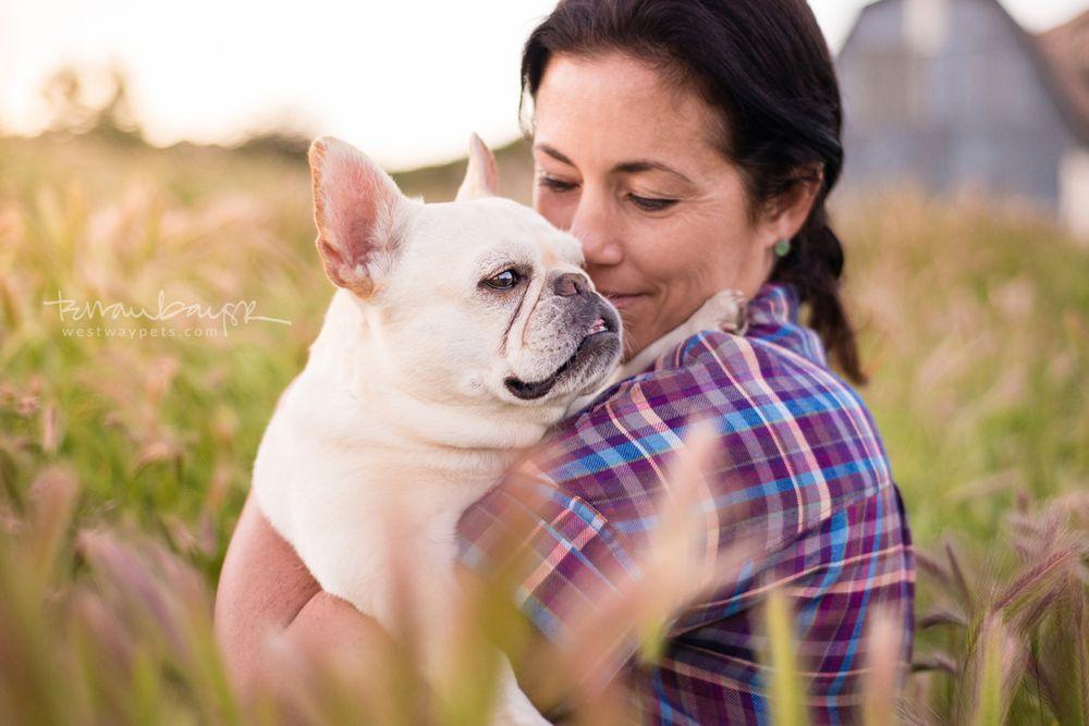 Westway Studio | Pet Photography